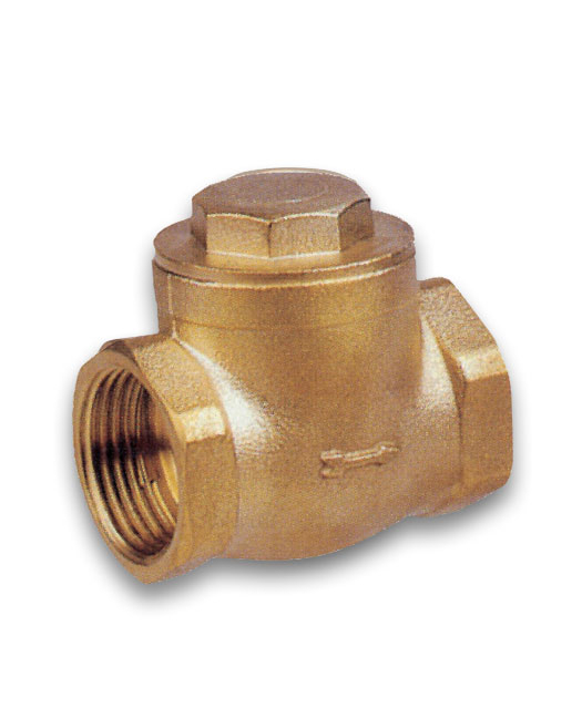 Swing Check Valve - Rubber Seat