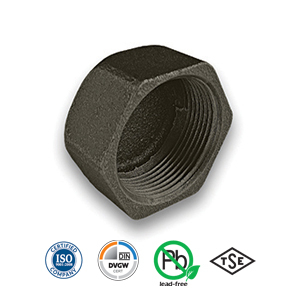 Black Hexagon Cap Malleable Pipe Fitting