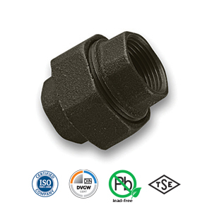 Black FxF Union Malleable Pipe Fitting