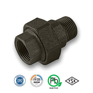 Black MxF Union Malleable Pipe Fitting